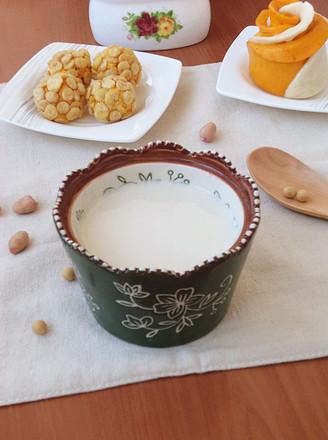 花生豆浆#早餐#的做法