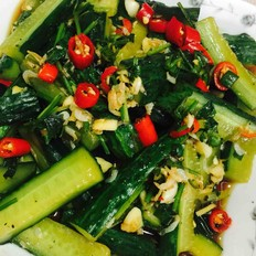 黄瓜拌虾米