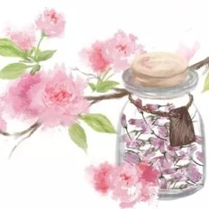 手繪食譜:鹽漬櫻花 手造的暖意 任何工業化商品都比不過