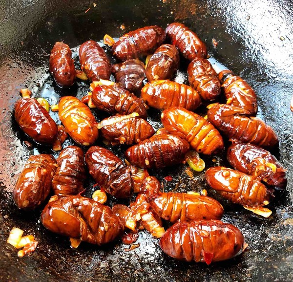 蚕蛹串串香橄榄油能用来擦链条吗图片