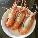 乐儿6395清蒸虾的做法