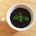 小如5918蓝莓酱酸奶盆栽的做法