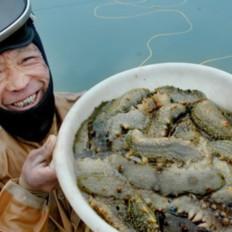 郝老板海参教你如何买海参?如何买到正宗的海参技巧?