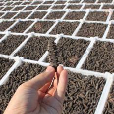 冬季吃海参有哪些好处?郝老板海参的营养丰富吗?