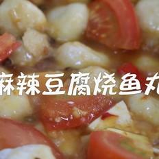 早渔人家|麻辣豆腐烧荆州鱼丸