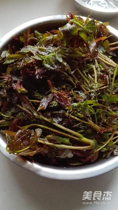 腌香椿的做法_腌香椿芽的做法_腌香椿芽怎么做_美食杰