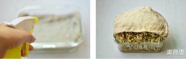 自制绿豆芽的做法图解