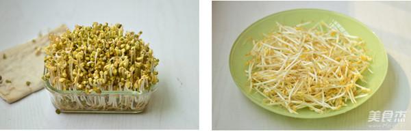 自制绿豆芽的家常做法