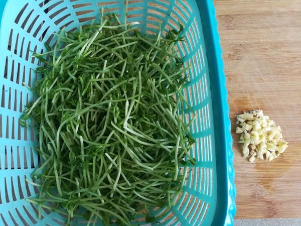 清炒柳蒿芽的做法图解