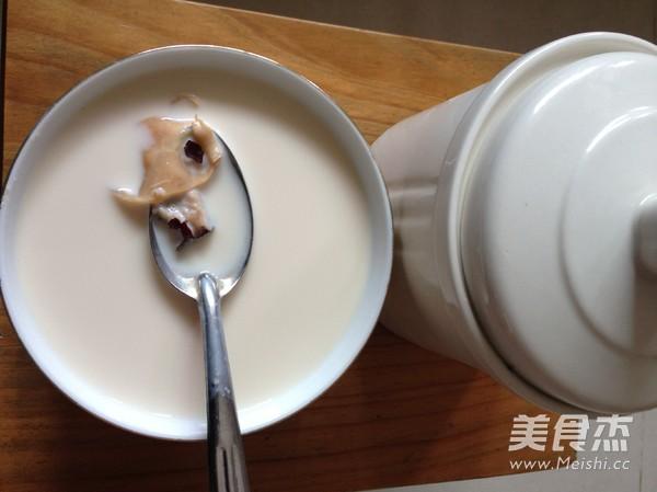 红枣牛奶炖花胶的做法